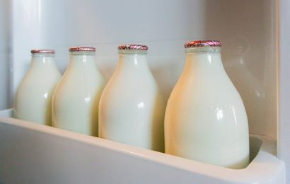SKIMMED milk instead of semi-skimmed could slow DNA ageing