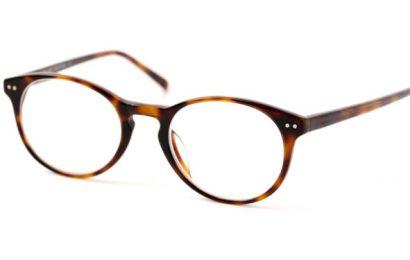 Glasses as disease vectors? – Naturopathy Naturopathy Specialist Portal
