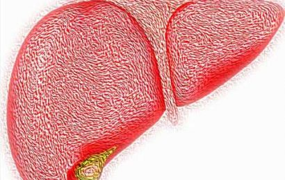 Researchers discuss findings of study on alcohol-related liver disease