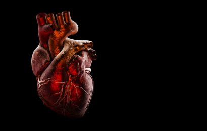 The mysterious connection between the coronavirus and the heart