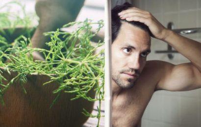 Hair loss treatment: An ancient herb which strengthens hair strands aiding in hair growth