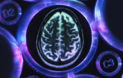 Alzheimer's symptoms: What is the difference between Alzheimer's disease and dementia?