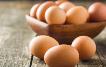 Update: egg recall in the case of Edeka, All of the samples correctly Naturopathy naturopathy specialist portal