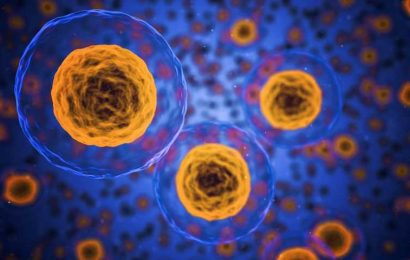 A new regulatory mechanism of response to metabolic stress