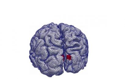 New research makes it easier to pinpoint brain activity in EEG studies