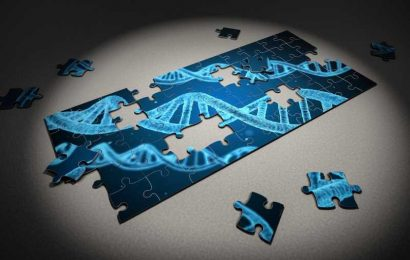 Study: Neanderthal genes are a liability for COVID patients