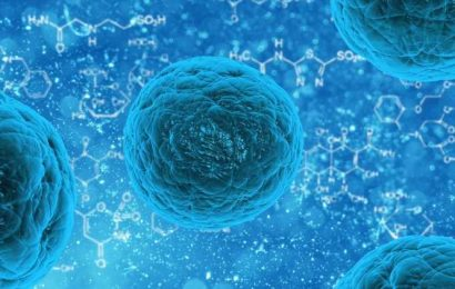 Cell therapy designed to treat inflammatory bowel disease
