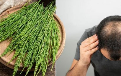 Hair loss treatment: Horsetail extract may inhibit hair loss by blocking its mechanisms