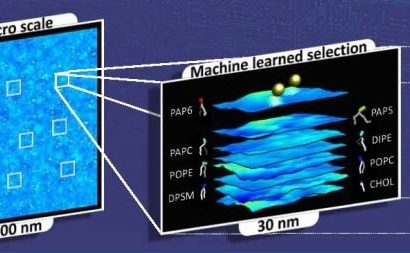 Scientists tap the power of high-performance computing to understand cancer growth