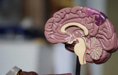 Aggregated waste in brain tumors predict disease severity