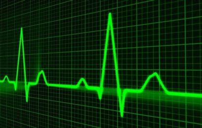 Heartbeat secrets unlocked as cardiac rhythm gene role identified