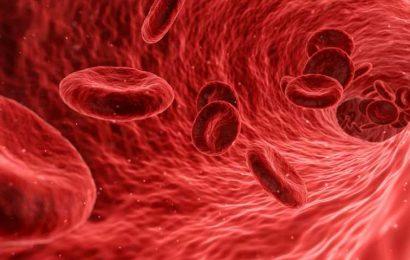 Zinc could be key to new diabetes treatments