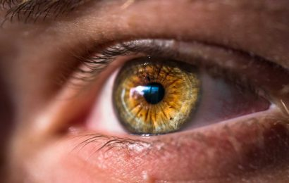 New study links protein causing Alzheimer's disease with common sight loss