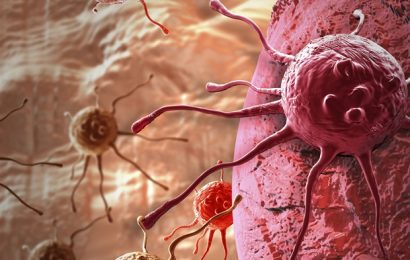 Researchers reveal novel therapeutic target in the treatment of certain cancers
