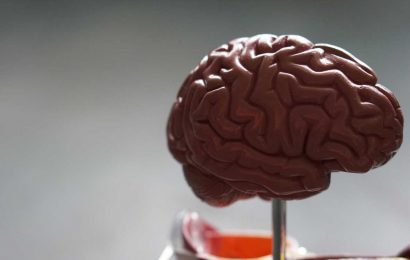 Advances in medical imaging enable visualization of white matter tracts in fetuses