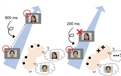 Infants recognize rapid images, just like adults