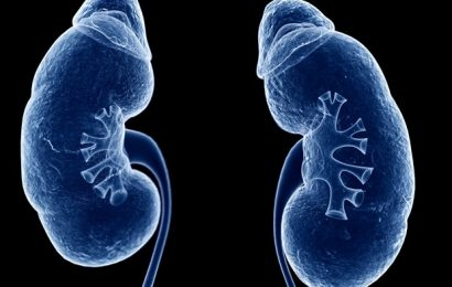 Kidney experts say it's time to remove race from medical algorithms. Doing so is complicated.