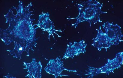 Cancer vaccine improves outcomes in Lynch syndrome model