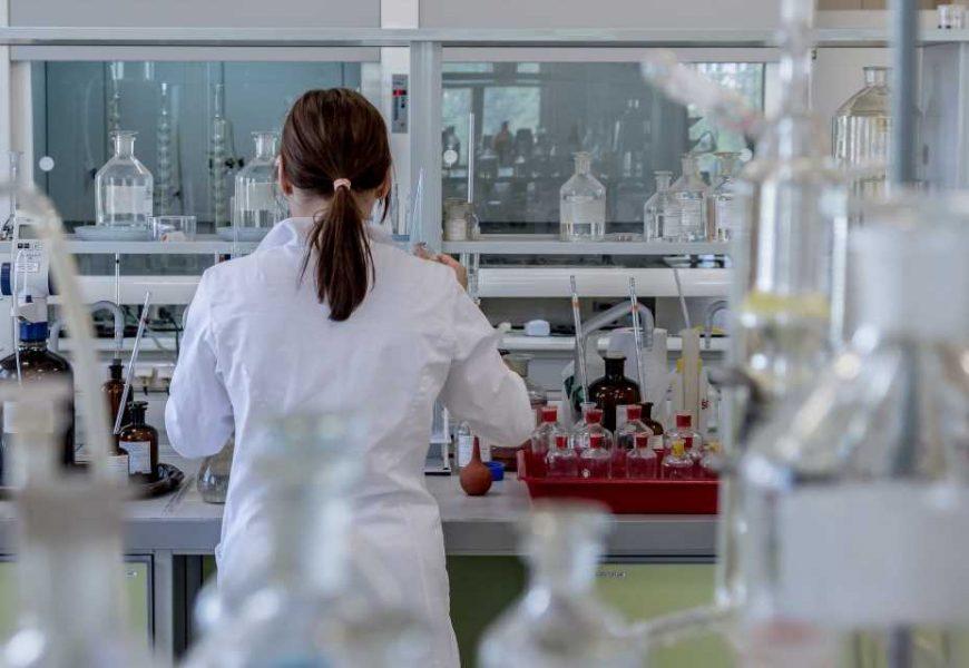 Tumor avatars predict patients response to immunotherapy